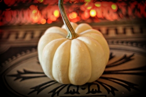 White Pumpkin web