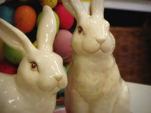 bunnies web