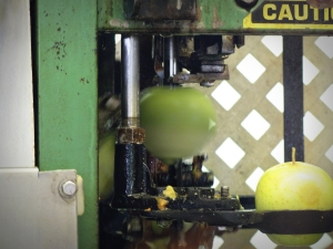 Automated apple peeler