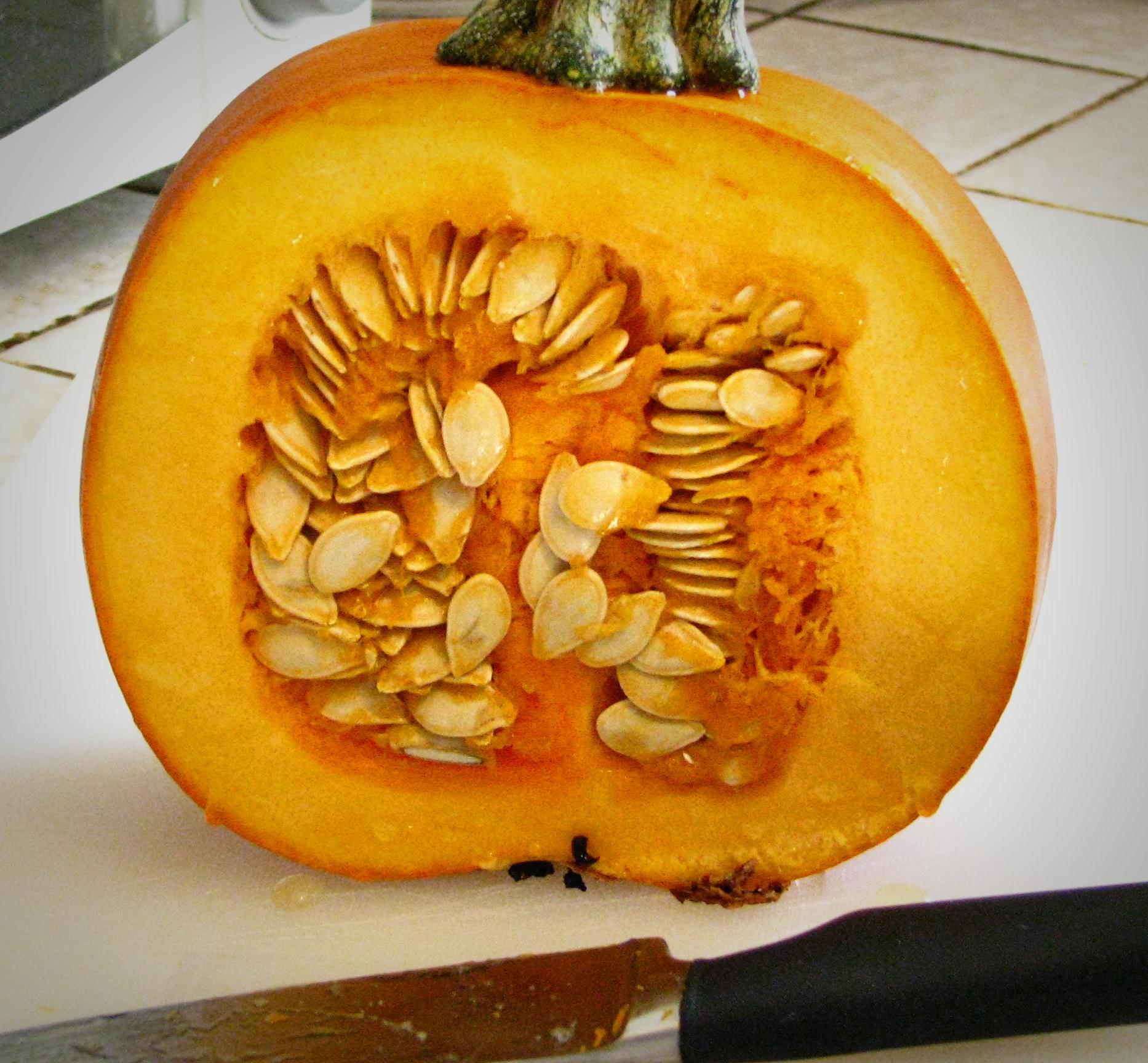 eating pumpkin rind