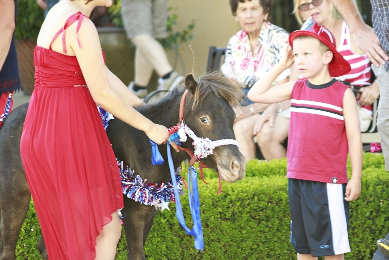 Pony in El Dorado Hills Parade